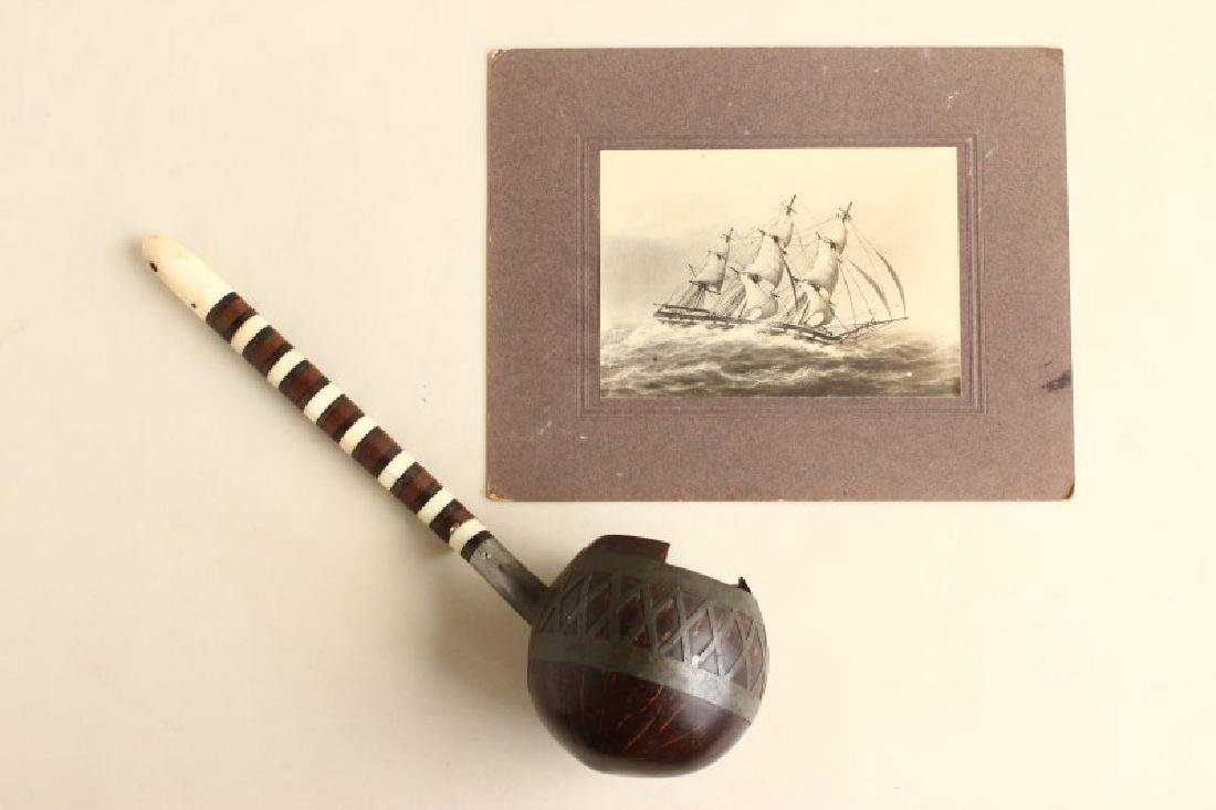 19th Century Whale Bone, Wood and Coconut Water