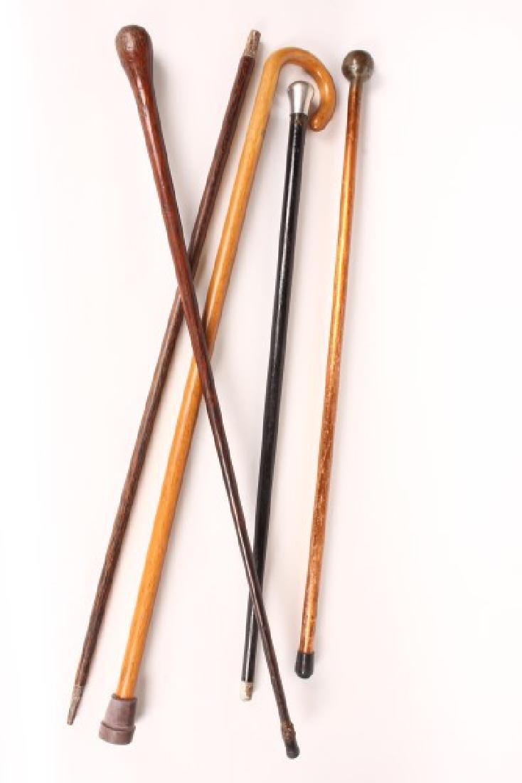 Group of Five Various Walking Sticks,