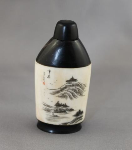 1018: Chinese Bone and Horn Snuff Bottle and Stopper,