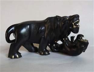 Afrique, XXe. Lionnes se combattant