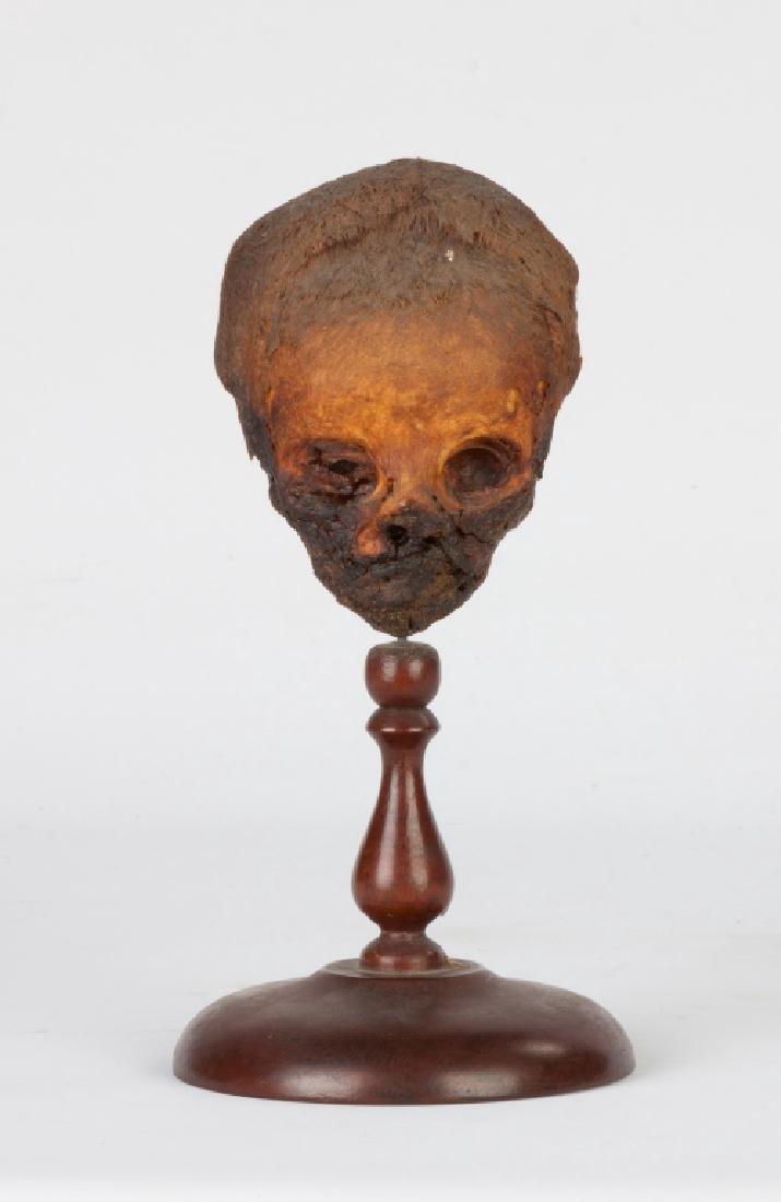 Peruvian Shrunken Head