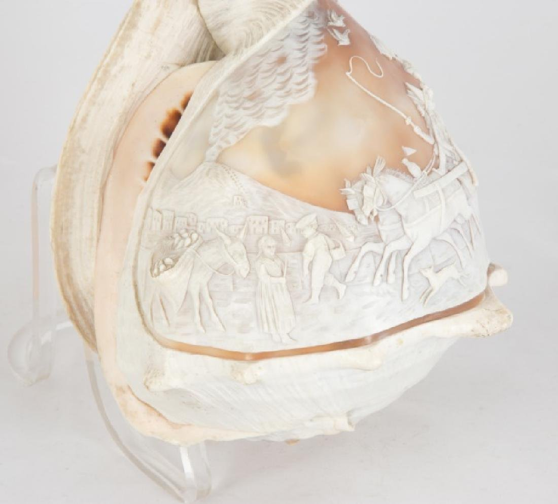 Pair of 19th Century Carved Conch Shells - 6