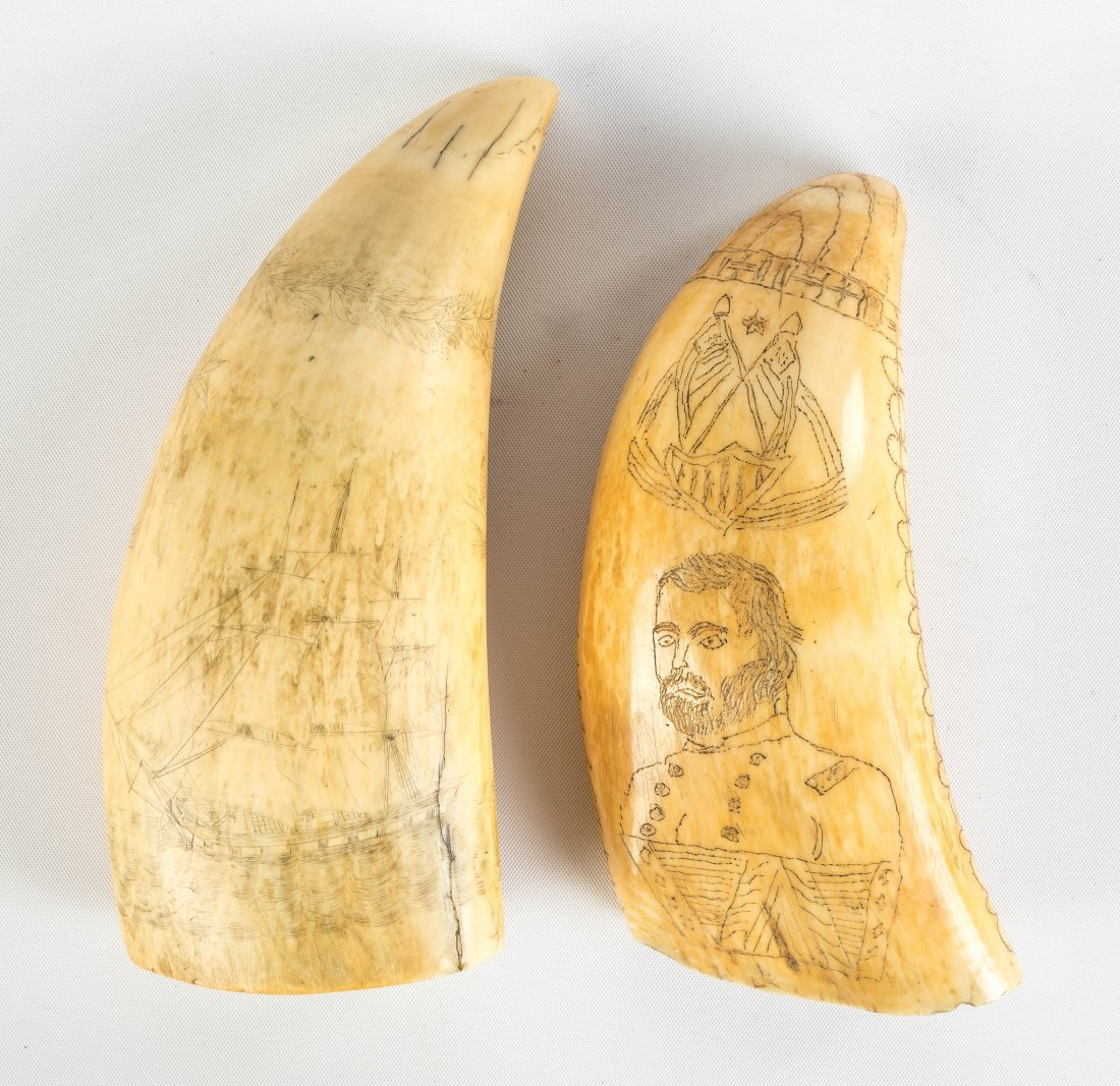 Two 19th Century Scrimshaw Whales Teeth