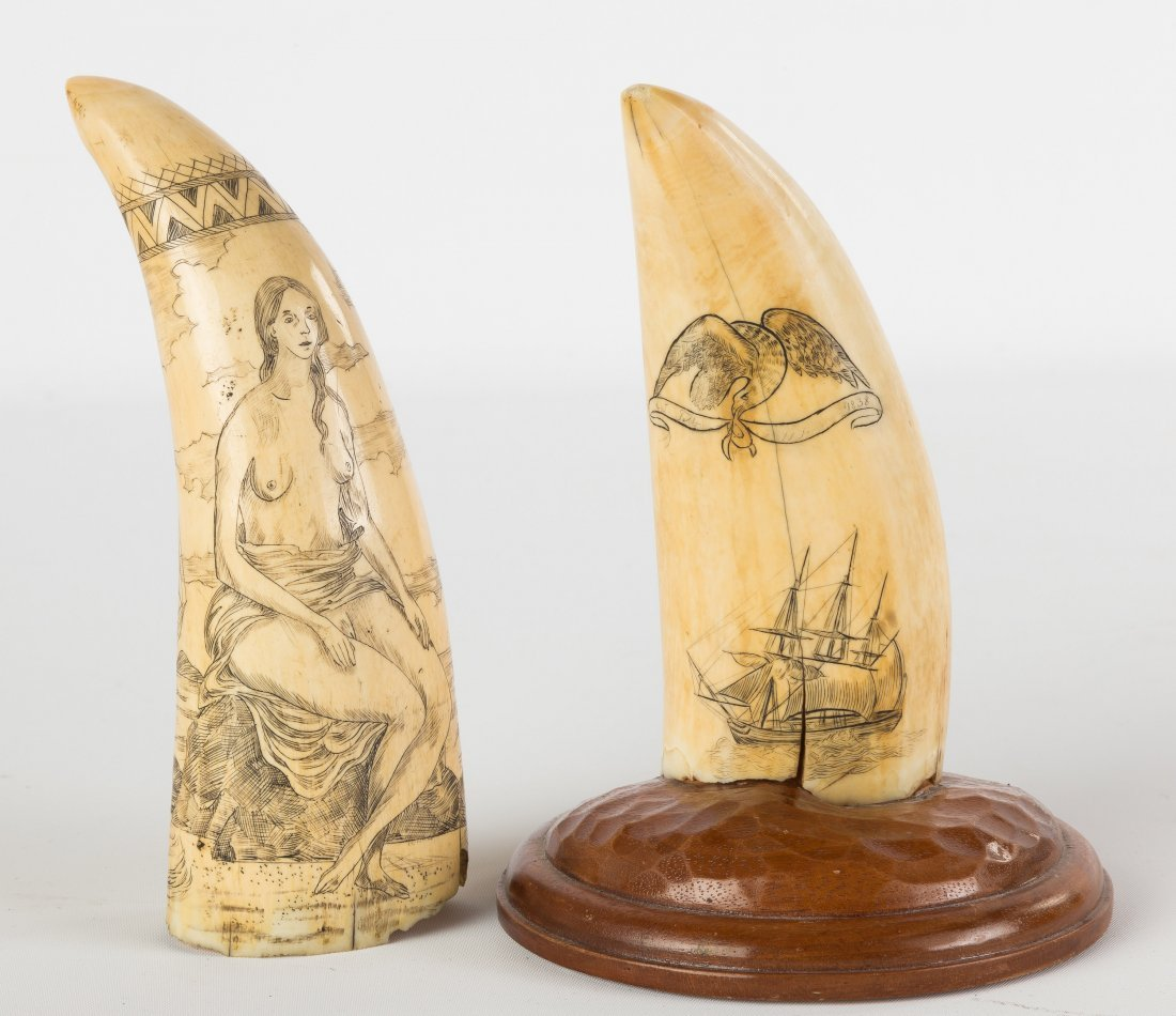 Two 19th Century Scrimshaw Whales Teeth - 2