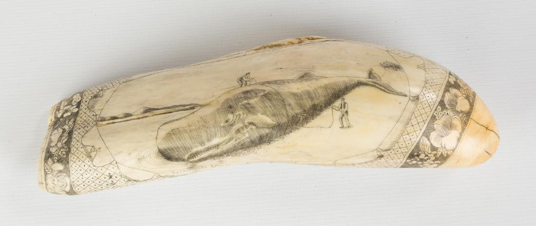 Large 19th Century Scrimshaw Whale Tooth with Whaling - 2