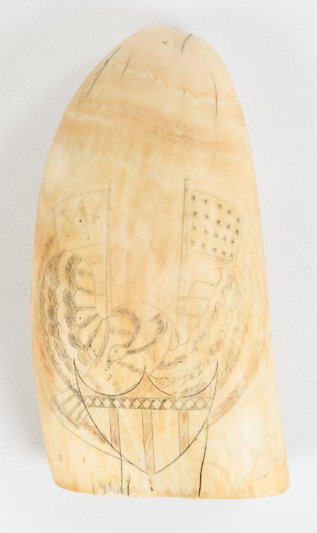 19th Century Scrimshaw Whales Tooth - 2