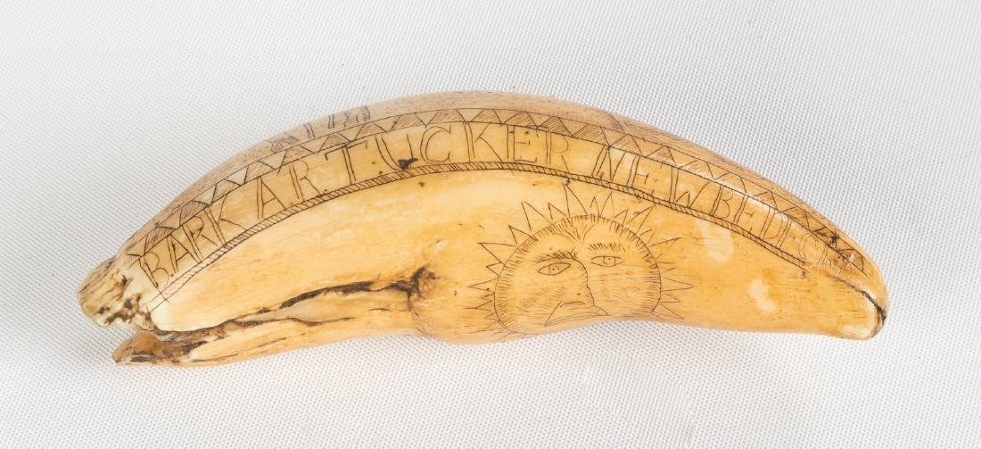 19th Century Scrimshaw Whales Tooth, Bark 'A. R.