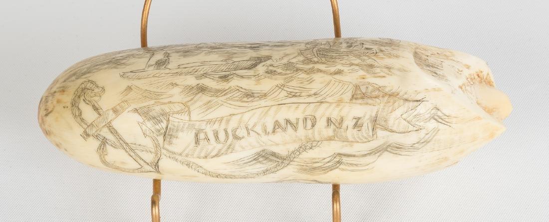 19th Century Scrimshaw, H.M.S. Pelorus, Auckland, New - 3