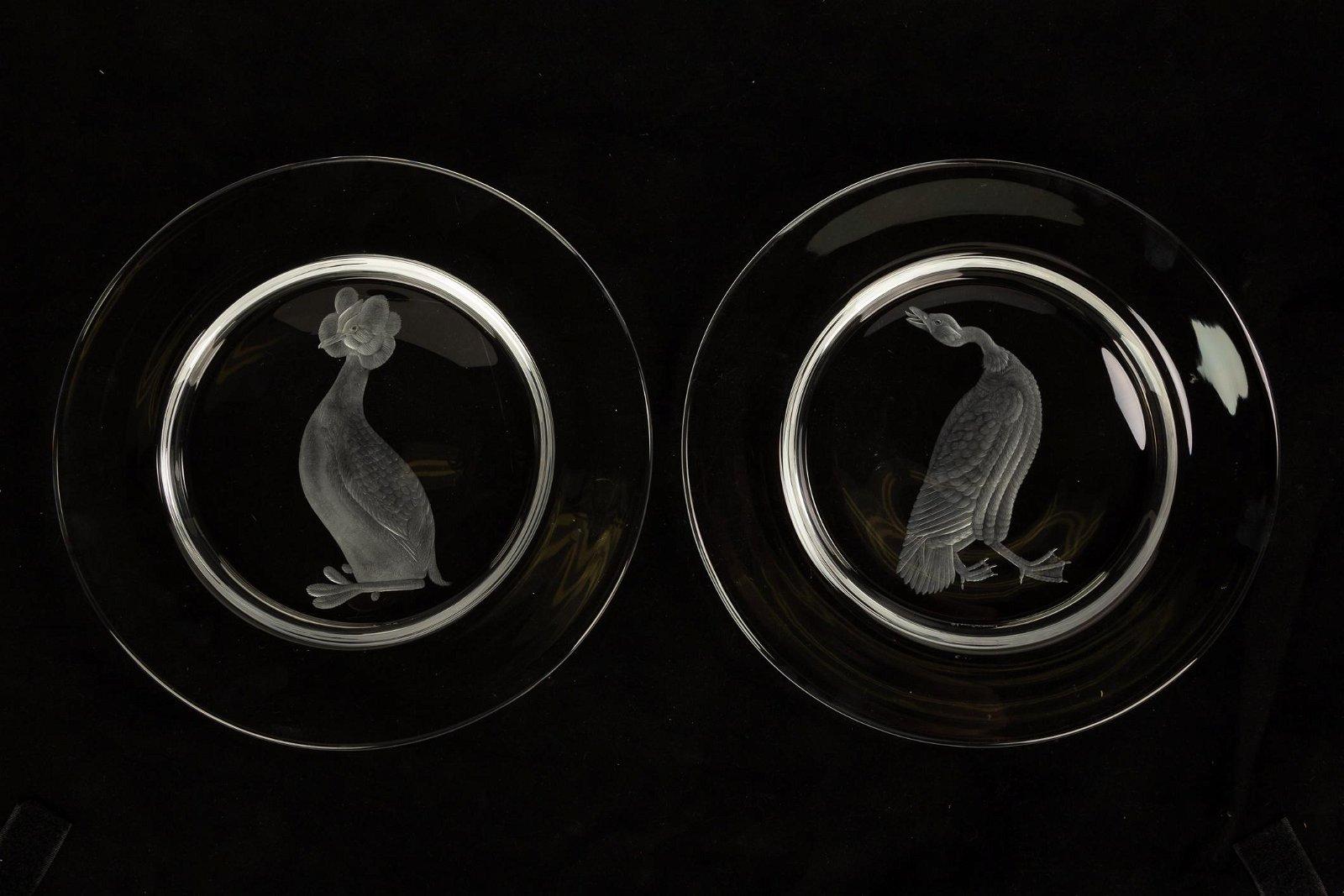 Eleven Clear Steuben Audubon Plates