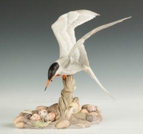 """Boehm Porcelain """"common Tern"""""""
