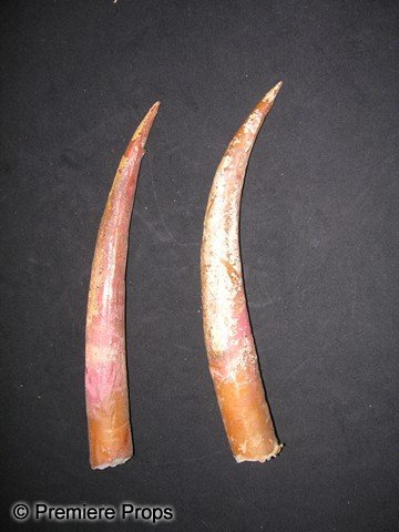 71: RETURN OF THE JEDI - Sarlacc Teeth