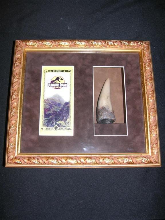21: Jurassic Park (1993) Leaflet and Dinosaur Tooth