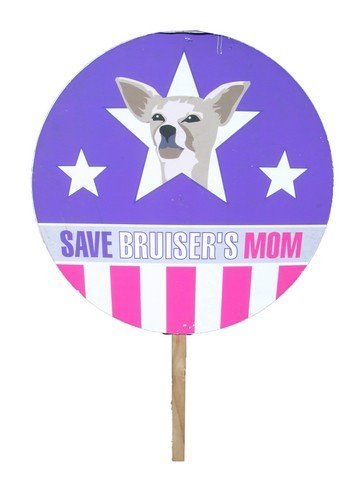 540: Legally Blonde 2 Picket Sign
