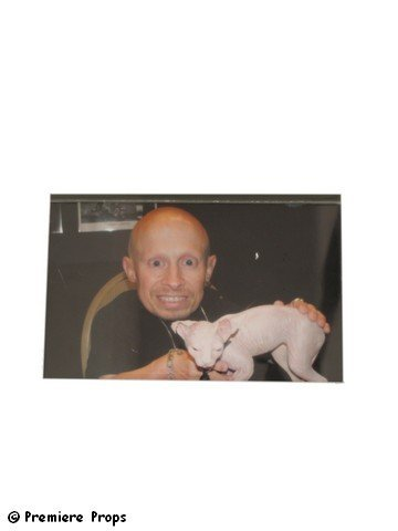 529: Austin Powers Goldmember Verne Troyer's Sphinx Cat - 3