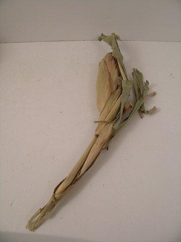 Man Of Steel Corn Stalk Prop