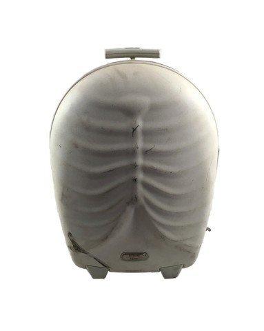 Brüno (Sacha Baron Cohen) Alexander McQueen Suitcase