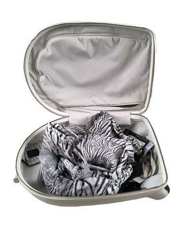 Brüno (Sacha Baron Cohen) Alexander McQueen Suitcase - 2