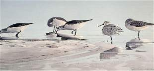 ARTIST PROOF PUBLISHERS LOT BIRDS