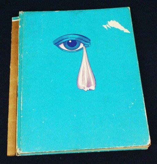 BOOK - THE BEATLES ILLUSTRATED LYRICS 1969