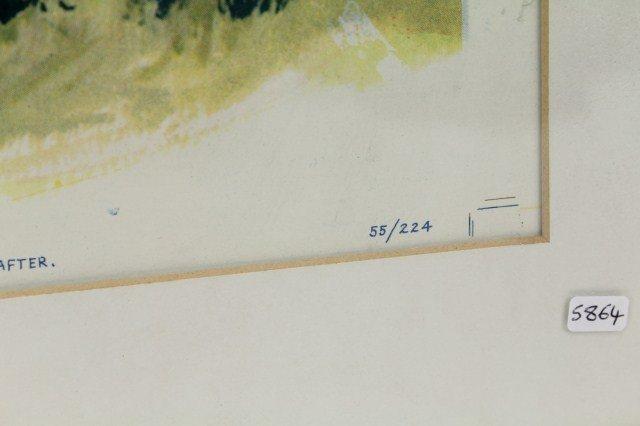 WALT DISNEY'S 1955 DAVY CROCKETT MOVIE POSTER - 4