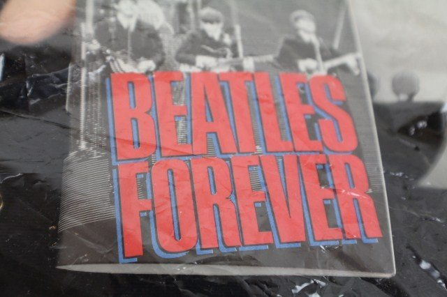 BEATLES FOREVER DOLLS BY APPLAUSE - 2