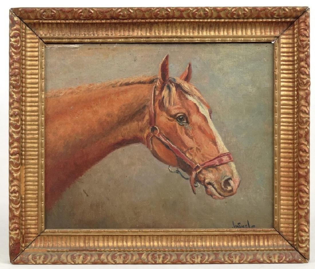 Jafnel, Horse Portrait