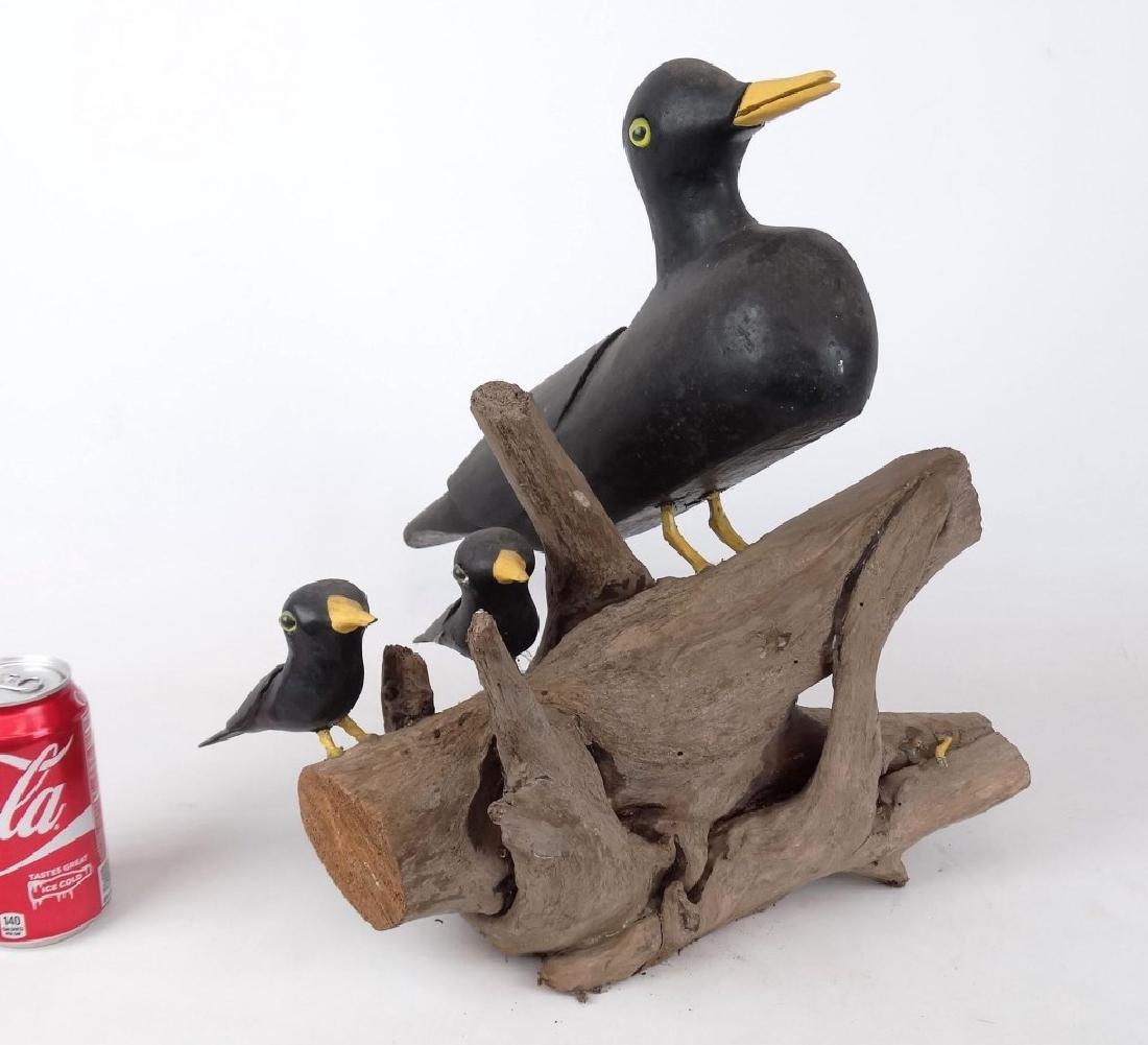 John Foster Nova Scotia Bird Grouping
