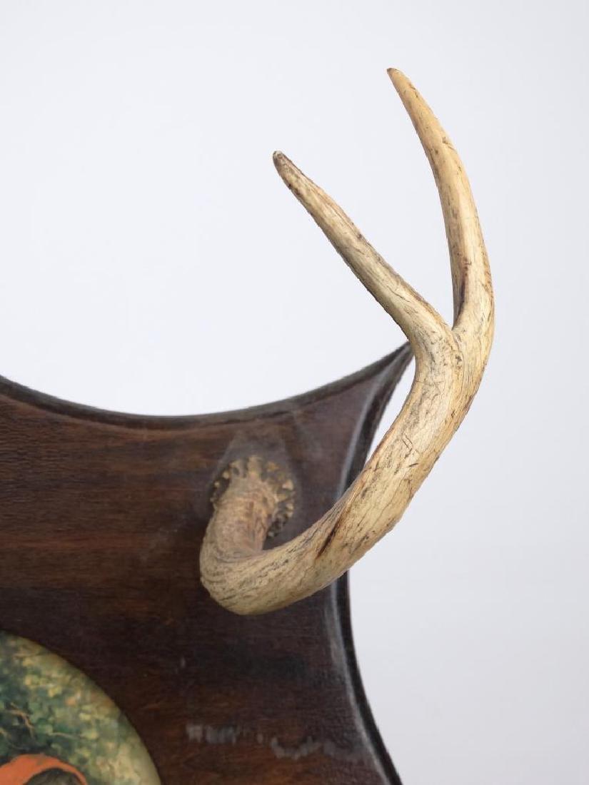 Horn Rack - 3
