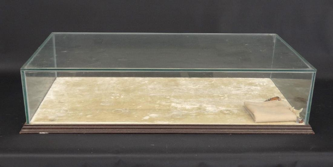 Glass Table Top Display Case