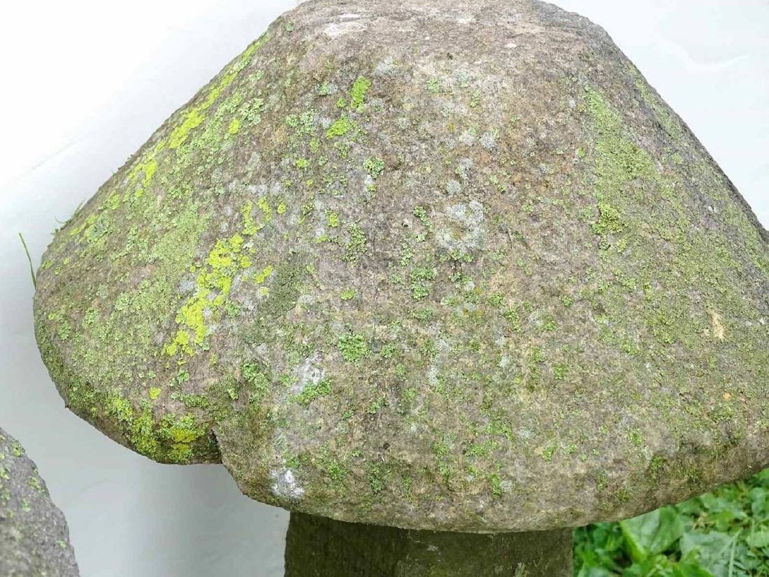 Pair Cut Stone Mushrooms - 3