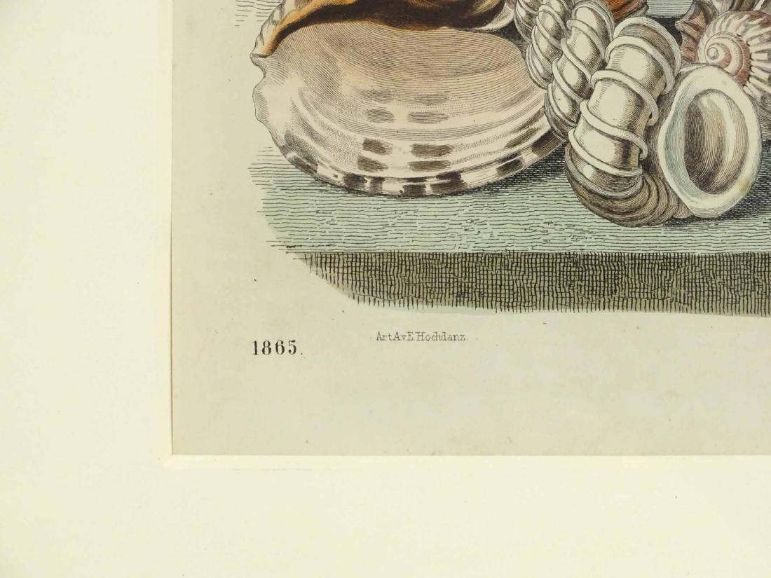 Pair Early Fish Prints - 7