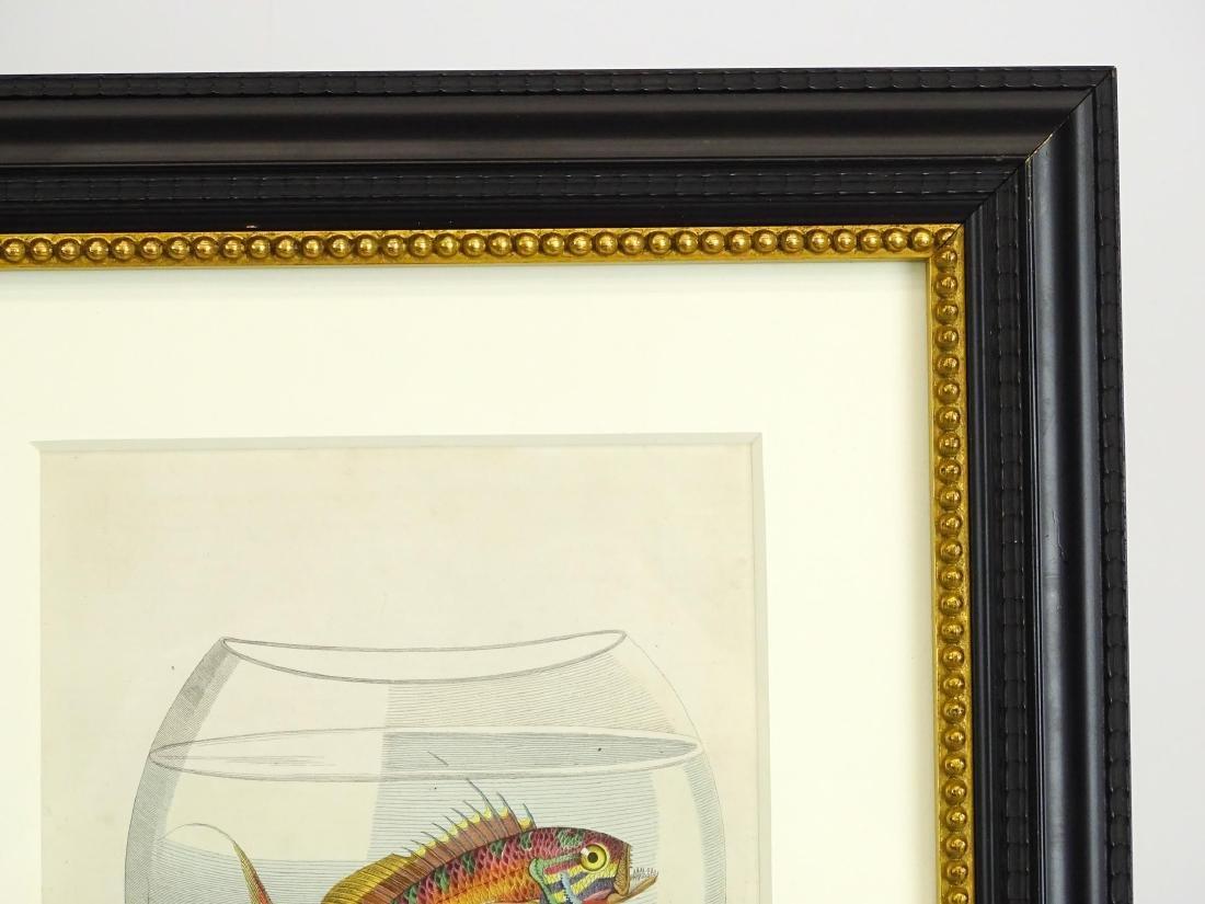 Pair Early Fish Prints - 8
