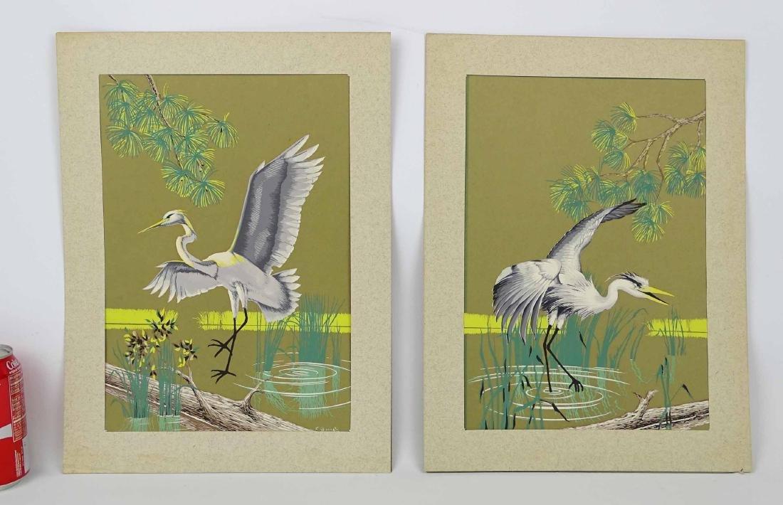 C. Banneli, Pair Bird Subjects