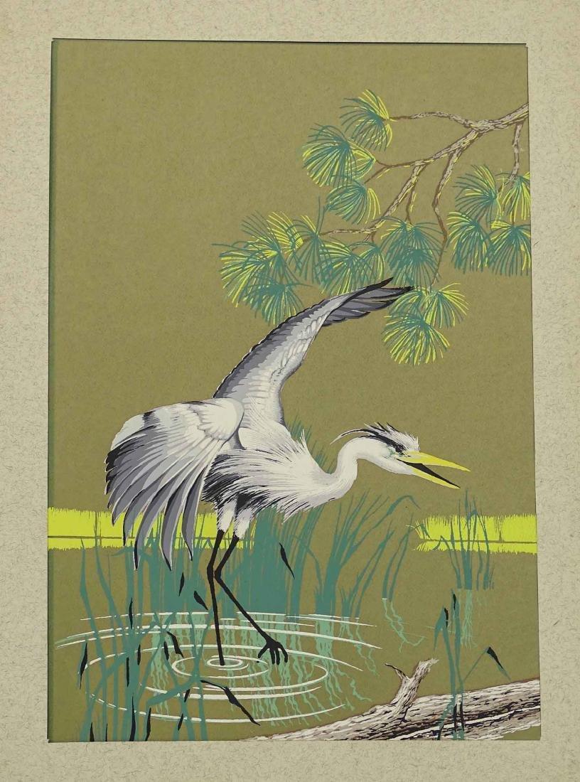 C. Banneli, Pair Bird Subjects - 3