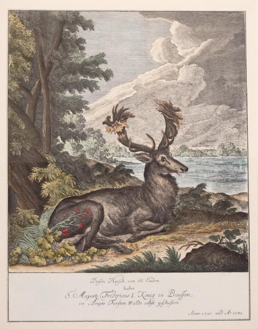 Johann Elias Ridinger, Four Etchings Of Stags - 2