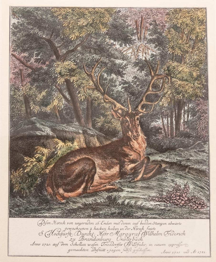 Johann Elias Ridinger, Four Etchings Of Stags - 4