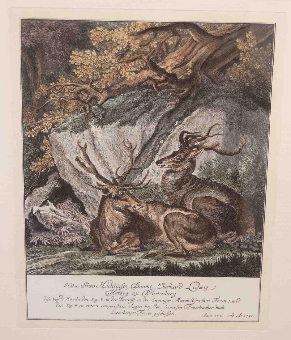Johann Elias Ridinger, Four Etchings Of Stags - 6