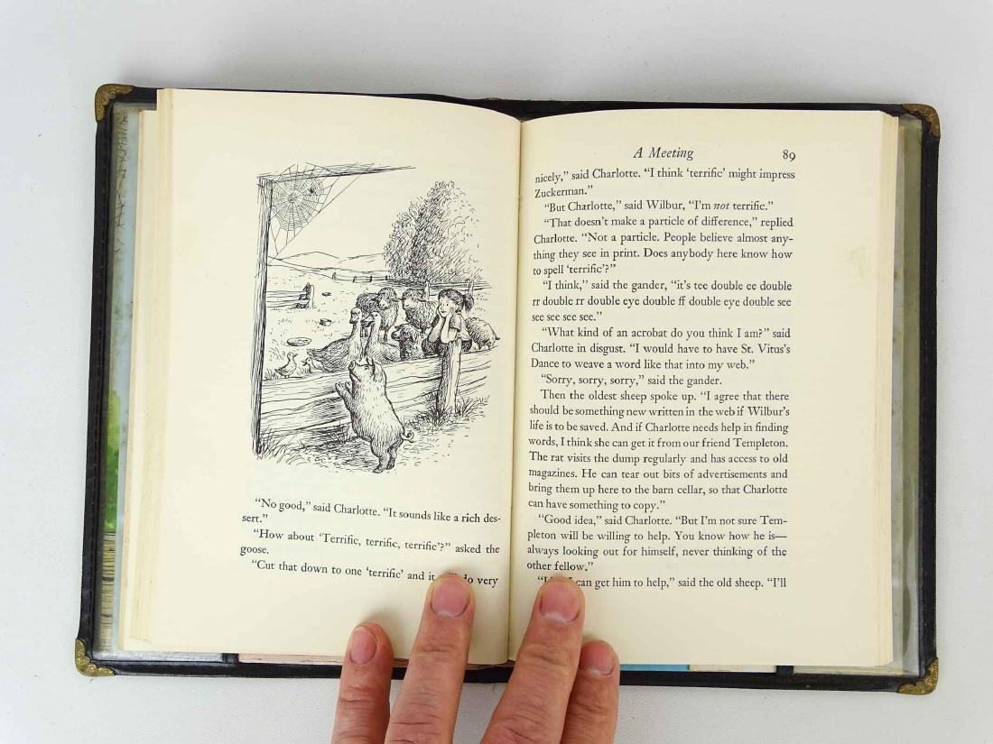 Book: Charlottes Webb - 4