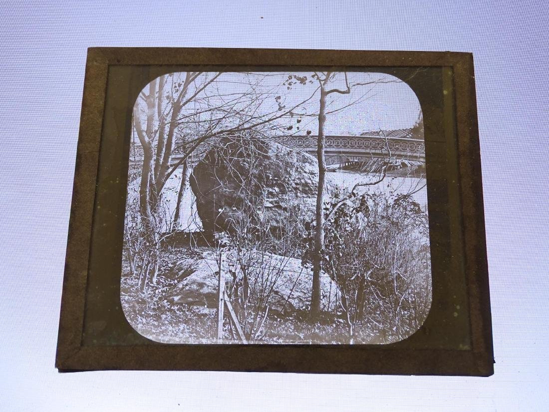 Early Glass Slides - 10