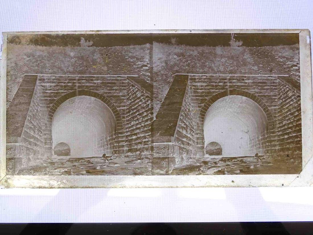 Early Glass Slides - 6