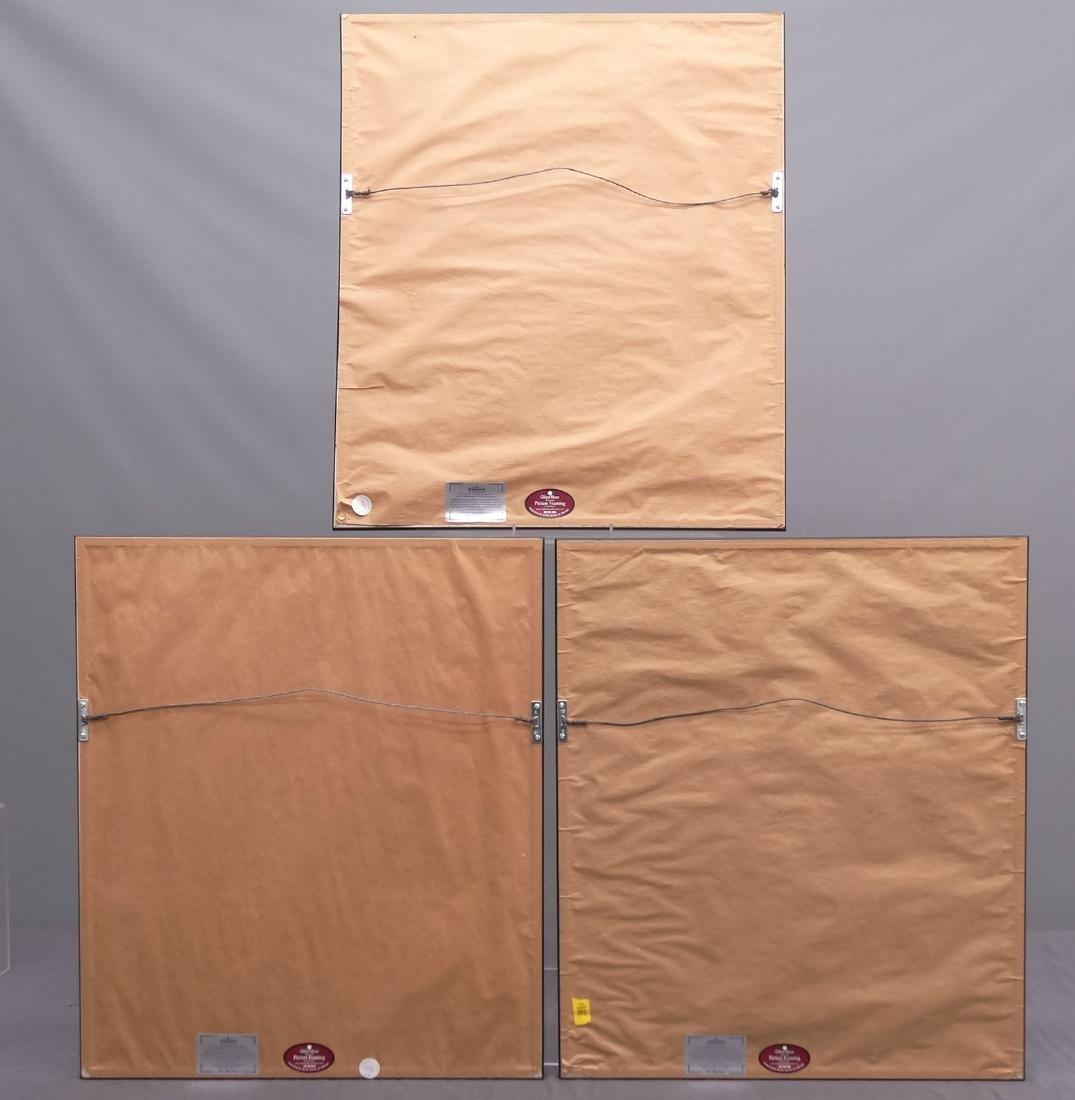 Lot (3) Framed Prints - 5
