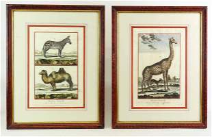 Two 19th c. French Animal Prints