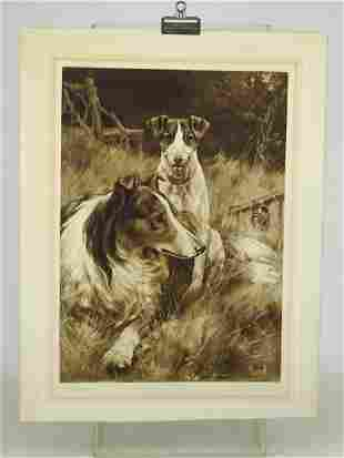 Thomas Blinks Dogs Antique Sporting Print