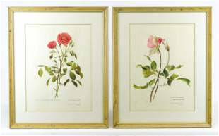 Charles Raymond Signed Floral Prints