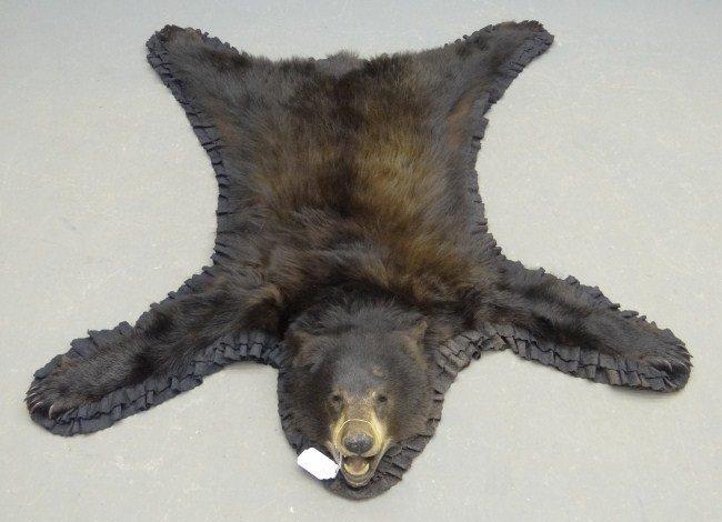 508: Bear Rug