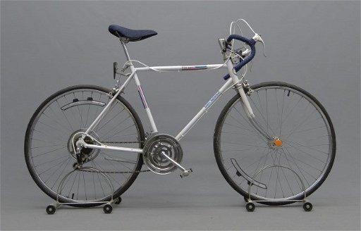 Sears Free Spirit 10 Speed Bicycle