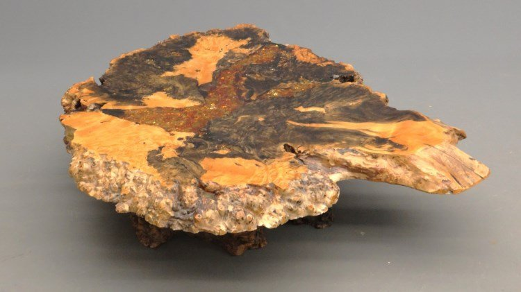 """Redwood Burl Coffee Table Labeled """"Holland's"""" - 3"""