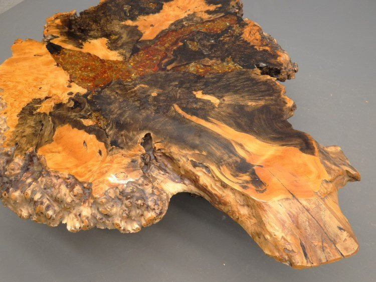 """Redwood Burl Coffee Table Labeled """"Holland's"""" - 4"""