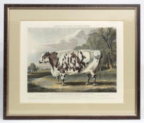"""fores Portraits Of Prize Cattle"", Print"
