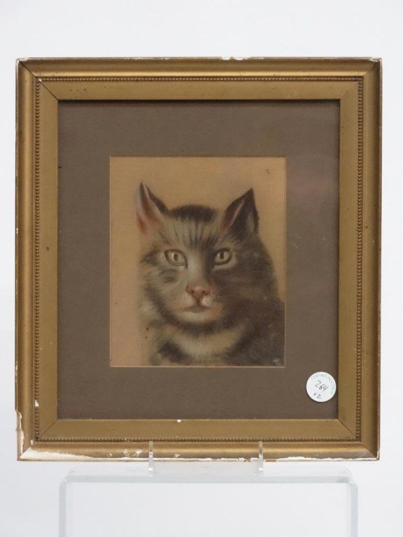 Pastel, Drawing Of  Cat - 2